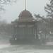 bandstand_fog19