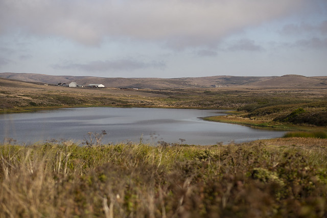 Facing North in Point Reyes at Abbotts Lagoon