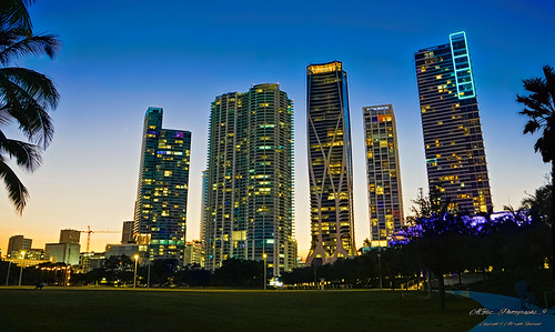 thebluehour cityscapes architecture lateafternoon walking walkingaround outdoors city colors coconuttree cityscape downtownmiami