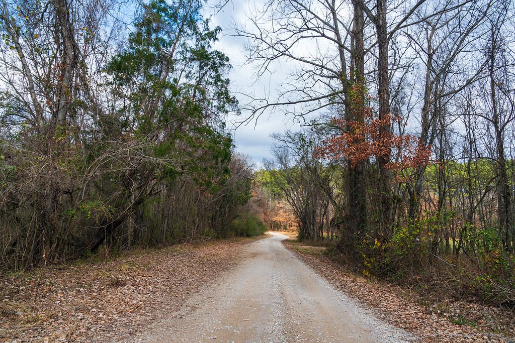 Refuge Road In December