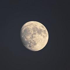 Lune_A736642_DxO  (由  jackez2010