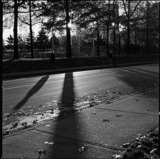 Shadow City - Film Hasselblad