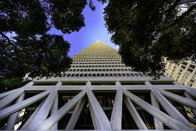 Transamerica Pyramid in San Francisco - California - USA