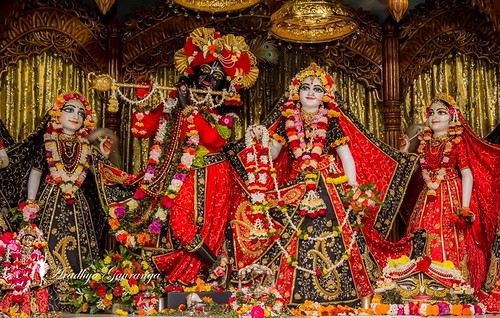 ISKCON Mayapur Deity Darshan 10 Dec 2019