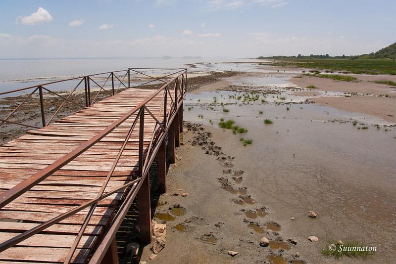 Lake Manyara, Tansania (26)