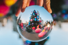 Kaunas Christmas Tree through a Glass Ball #343/365