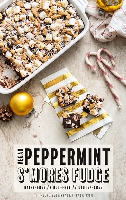 Vegan Peppermint S'mores Fudge