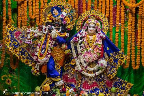 ISKCON Vrindavan Deity Darshan 11 Dec 2019