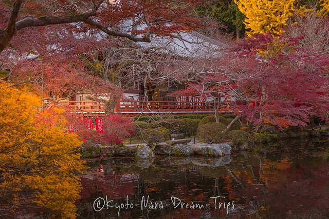 Autumn Scenery at Daigo-ji Temple in Kyoto City, Japan.