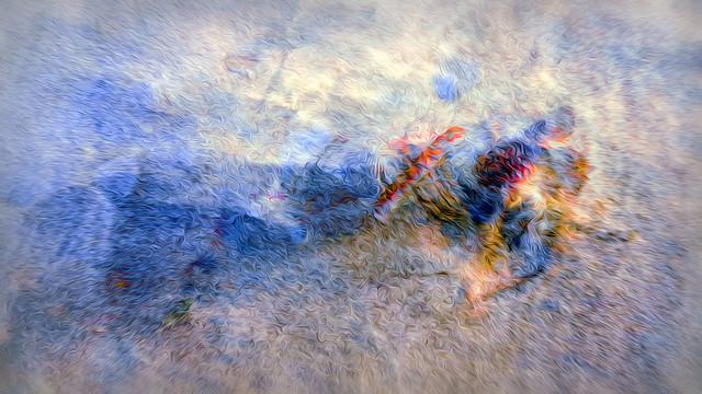 Bildschichten Muscheln am Strand 04