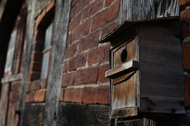Altes Vogelhäuschen an der Hauswand eines verlassenen Bauernhauses