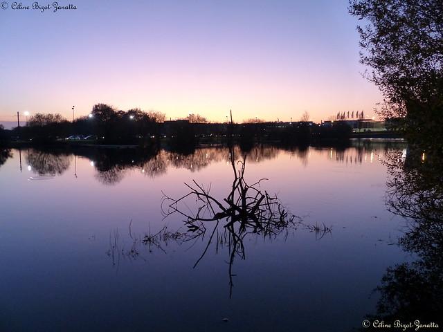Lumière du soir sur Nantes - Pays de la Loire - France - Europe