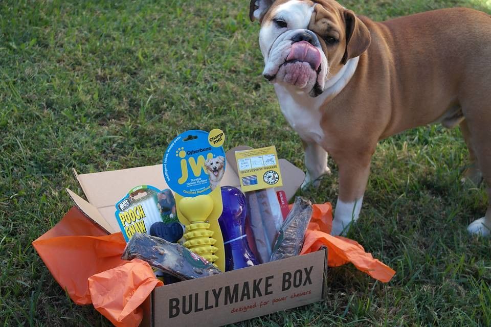 Bullymake subscription box