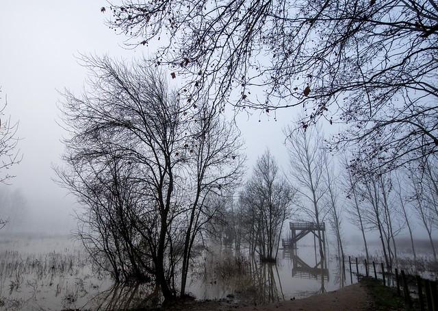 Sota núvols d'un cel indiferent al dolor