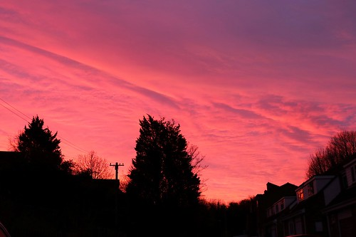 redskyinthemorning sunrise royston hertfordshire england unitedkingdom uk canoneos750d clouds sky morning silhouette trees buildings houses herts