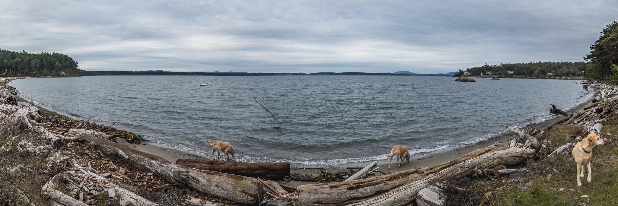 Three-dog view by Third Lagoon