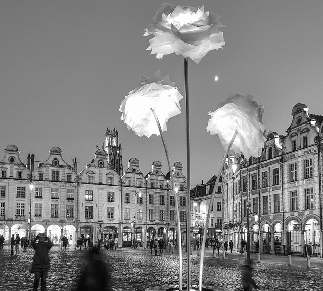 Arras, un bouquet de fleurs sur la place des Héros