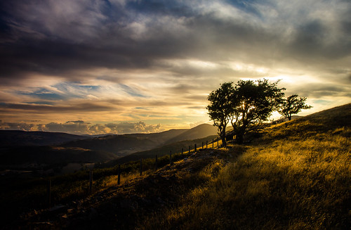 llangollen sunset berwyn hills trees