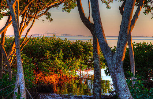 sunshineskyway bridge tampabay sunshine skyway highway pinellas point park st petersburg florida landscape water sunset