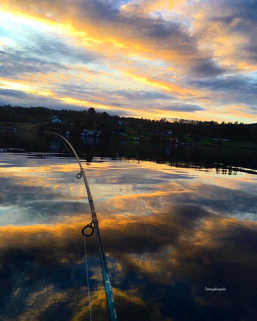 Evening session with fishingrod and camera. Skjoldastraumen, Rogaland, Norway