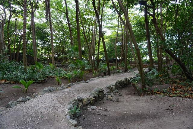 San Miguelito (Zona Arqueológica)