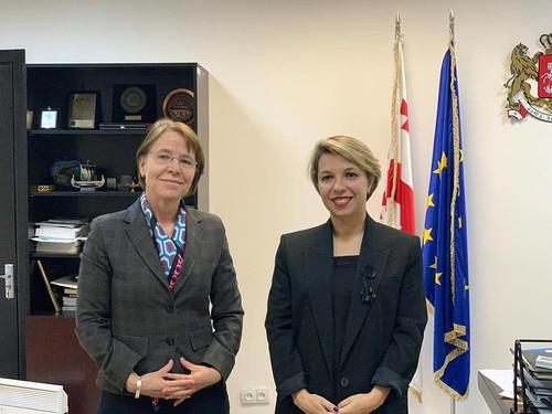 სახალხო დამცველი ნიდერლანდების სამეფოს ელჩს შეხვდა / 02.12.19 / Public Defender Meets with the Ambassador of the Kingdom of the Netherlands