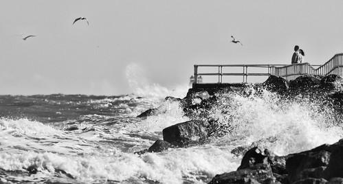 newsmyrnabeach florida ponceinlet windy sammysantiago samuelsantiago walldecor photography wave wind wavecrash canon7d canonef400mmf56l