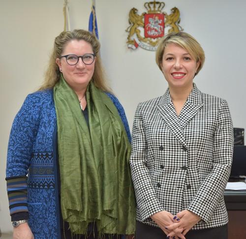 შეხვედრა ნორვეგიის სამეფოს ელჩთან / 29.11.19 / Meeting with the Ambassador of the Kingdom of Norway