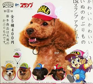 一秒幫狗狗變身成為阿拉蕾!奇譚俱樂部 可愛狗狗帽 x 怪博士與機器娃娃(キタンクラブ かわいいかわいいいぬのかぶりもの Dr.スランプアラレちゃん)