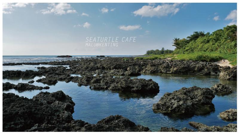 海龜咖啡-30