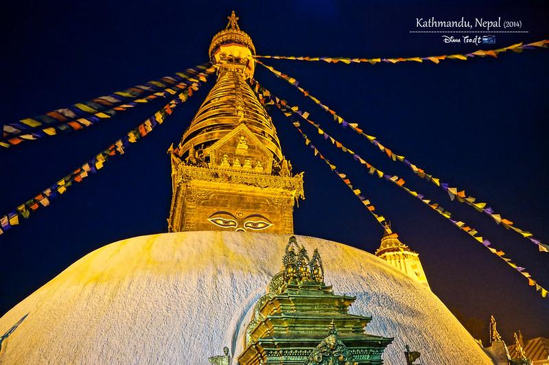 2014 Nepal Kathmandu Swayambhunath Temple Monkey 3