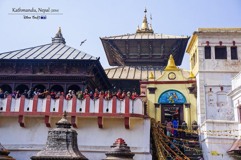 2014 Nepal Kathmandu Pashupatinath Temple 3