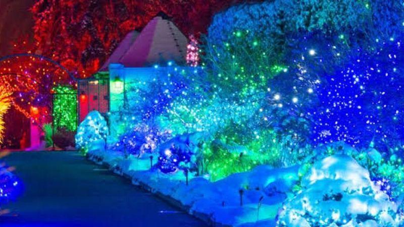 best christmas lights near me