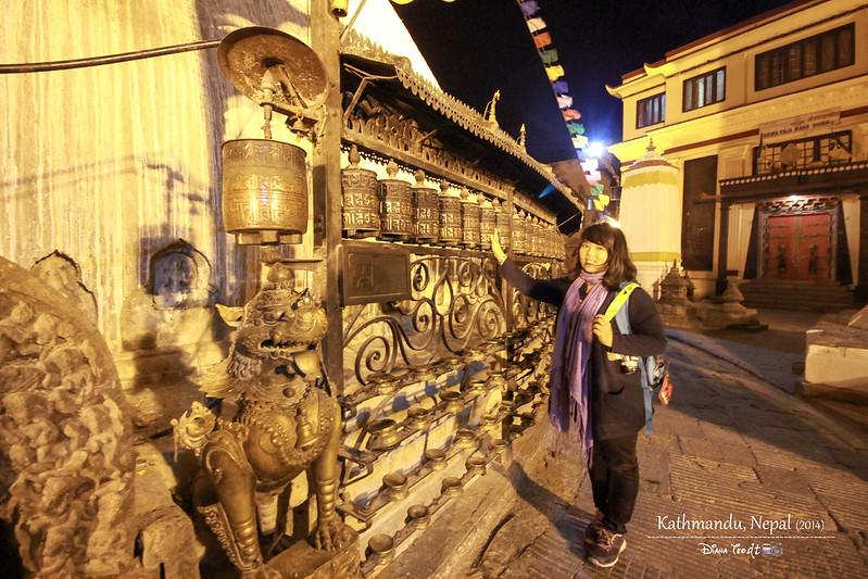 2014 Nepal Kathmandu Swayambhunath Temple Monkey 1