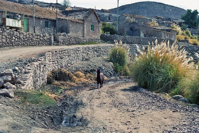 CHILE 2009- Norte Grande / Pueblos andinos - Caspana