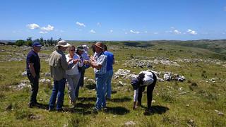 Última visita de campo en Uruguay del proyecto global sobre Pastizales