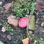 discarded items eian kantor
