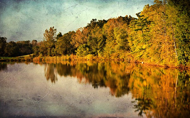 Reflecting on Fall #47