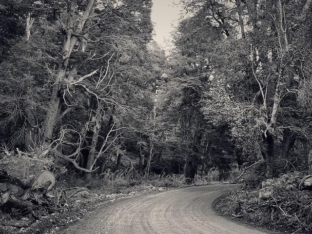 Ruta 65 Camino a Villa Traful, Neuquén