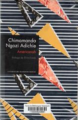 Chimamanda Ngozi Adichie, Americanah
