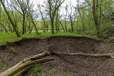 Sinkhole, Beech Grove, Putnam County, Tennessee