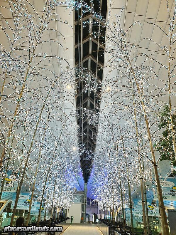 tokyo haneda sky illumination 2019 trees