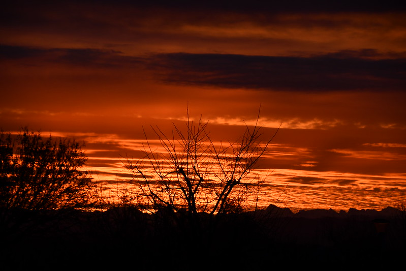 Sunrise A 11.12 (1)
