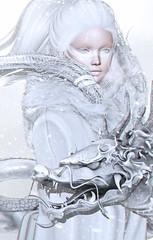 Winter Creatures