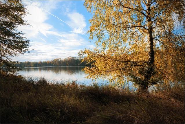 Ruhe am Teich