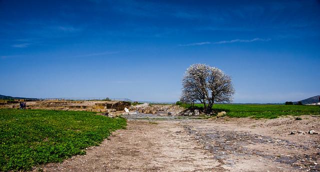 Vulci, landscape
