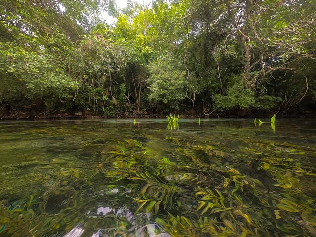 Bonito/MS - Sucuri River