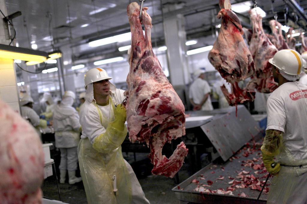 不少全世界最大的肉品公司在亞馬遜地區營運。照片來源:英國非營利組織新聞調查局