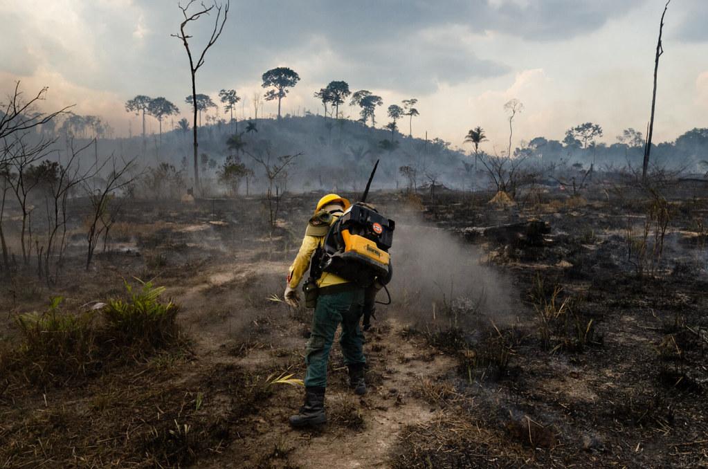 調查顯示128個屠宰場與亞馬遜森林大火間的關係。照片來源:英國非營利組織新聞調查局