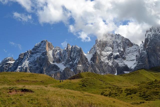 Alpine Grasslands by Jim